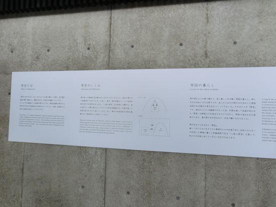 yuimuro7.jpg
